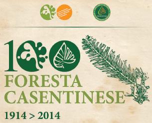 100 anni di foresta